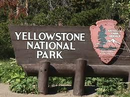 yellowstone_park.jpg