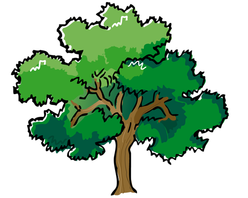 tree.png.png