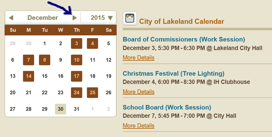 Screenshot of Boards and Commissions Calendar Opens in new window